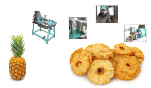 pineapple peeling coring machine -1